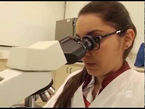 Curso de Medicina Veterinária UPF - UPFTV