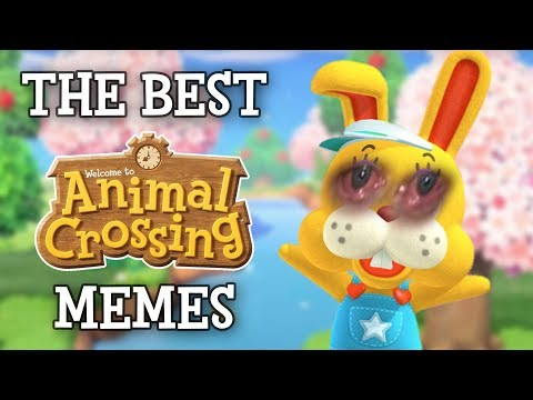 The Best Animal Crossing Memes Youtube