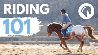 HOW TO RIDE A HOŔSE (EASY BEGINNERS GUIDE)