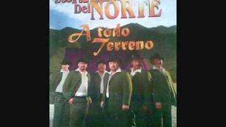 TRAILEROS DEL NORTE, TOCO MADERA.wmv
