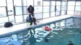 Peli Case 1600 Tested to Destruction Challenge 3 - Buoyancy and IP67