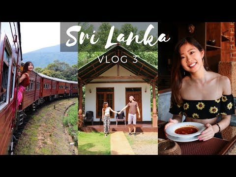 SRI LANKA: $20 PRIVATE VILLA WITH ELEPHANTS + THE MOST BEAUTIFUL TRAIN RIDE | TRAVEL VLOG 3