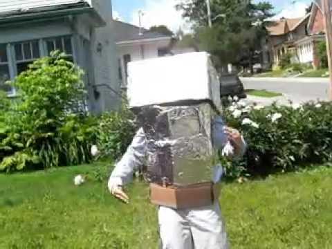 Mr. Roboto-Styx