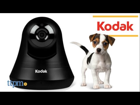 kodak-video-monitor-for-pets-from-tend-insights