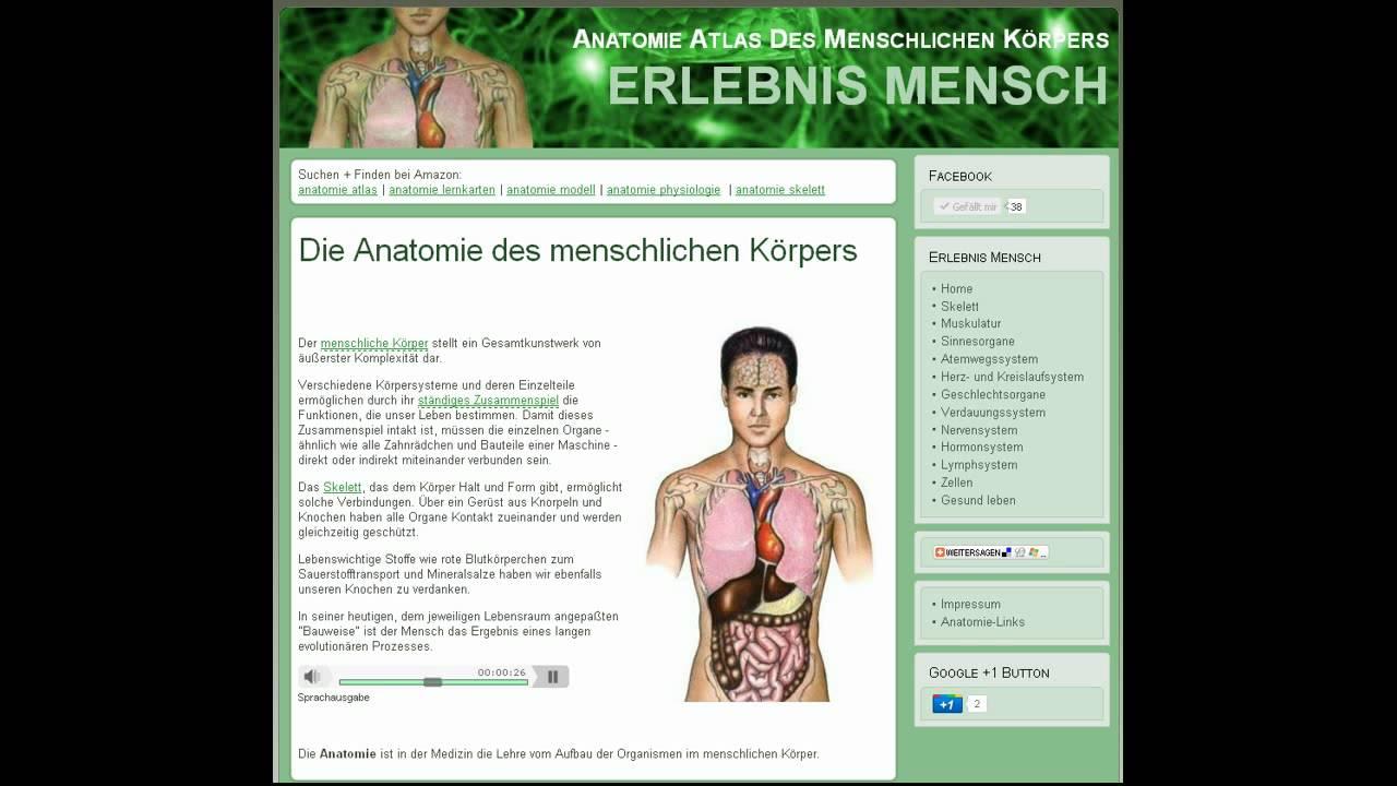 Anatomie Atlas des menschlichen Körpers - YouTube