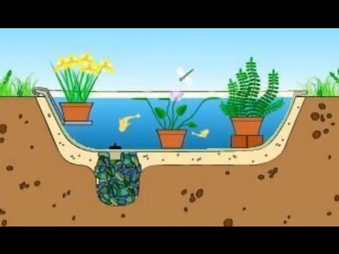 видео: Пруд из старой ванны. Как сделать пруд на даче