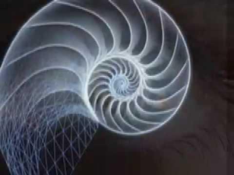 Spiral Theory