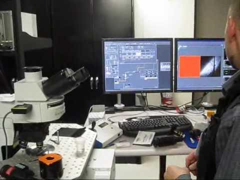 Multiphoton Microscope Alignment using Second Harmonics Generation Crystal