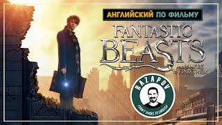 Fantastic Beasts | Фантастические твари | Английский по фильмам