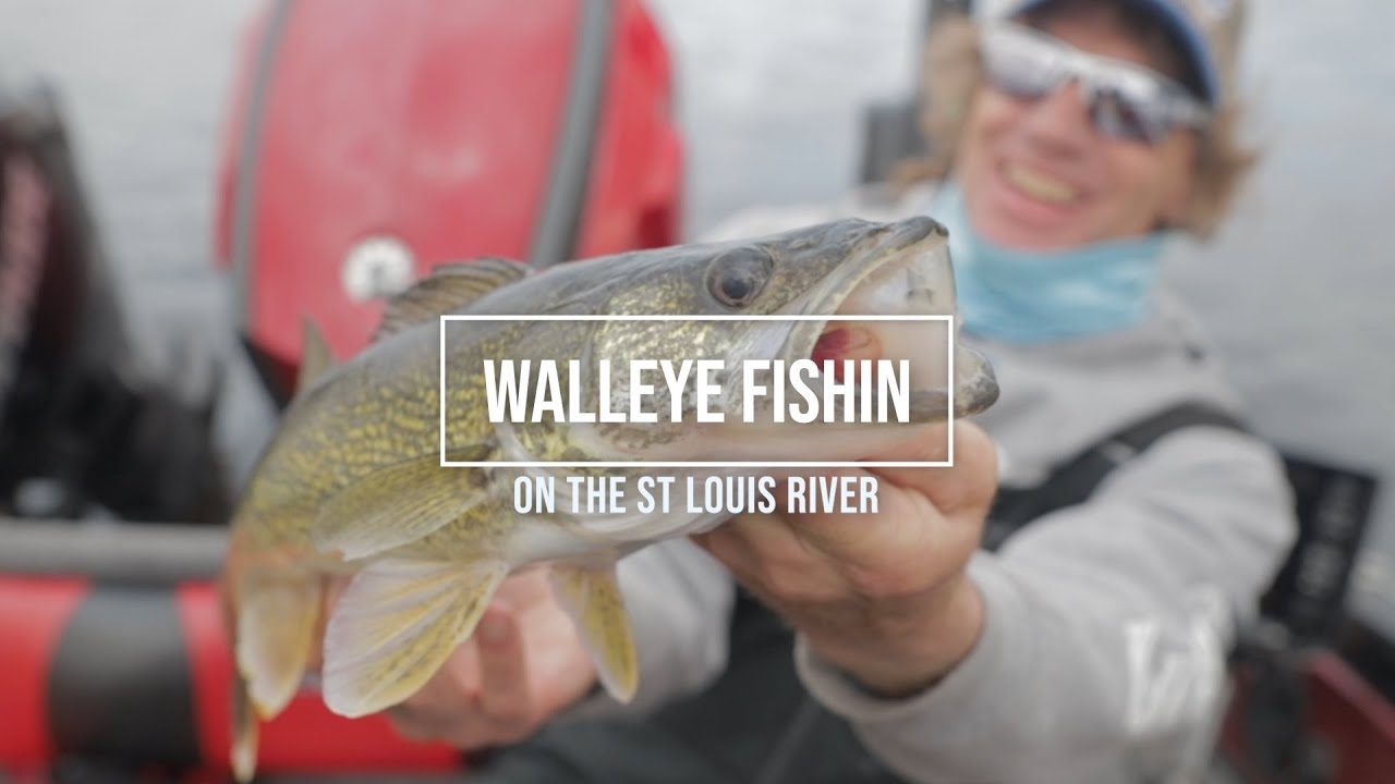 Download Crazy Shallow Water Walleye Trolling with Pete Maina and Dustin Carlson