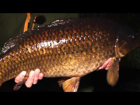CARP FISHING TV THE CHALLENGE Episode 1 Catch on 3 Lead Setups
