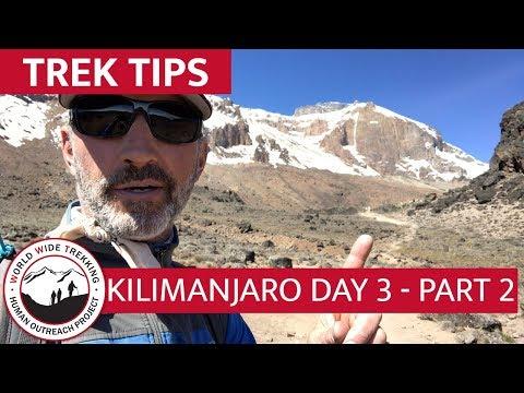 Lava Tower To Barranco Camp - Day 3 Part 2 Climbing Kilimanjaro