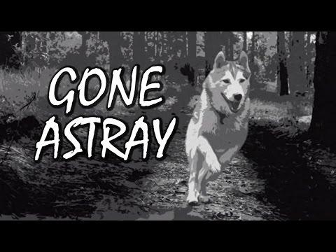 Gone Astray - Gotta Find My Dog! Black & White Horror Game