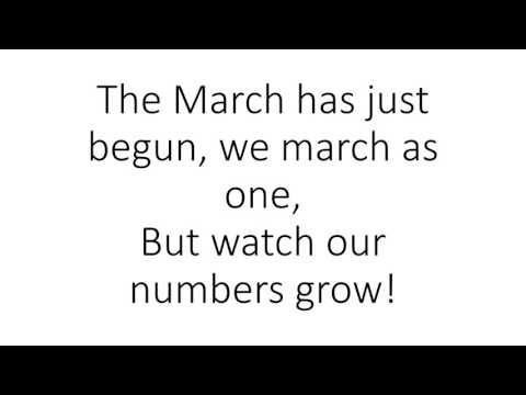 March of the Army Ants video