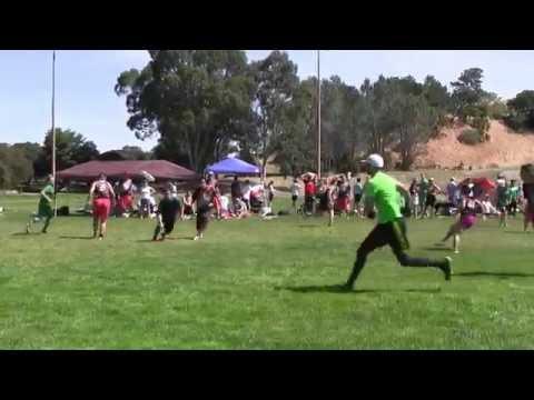 Video 446