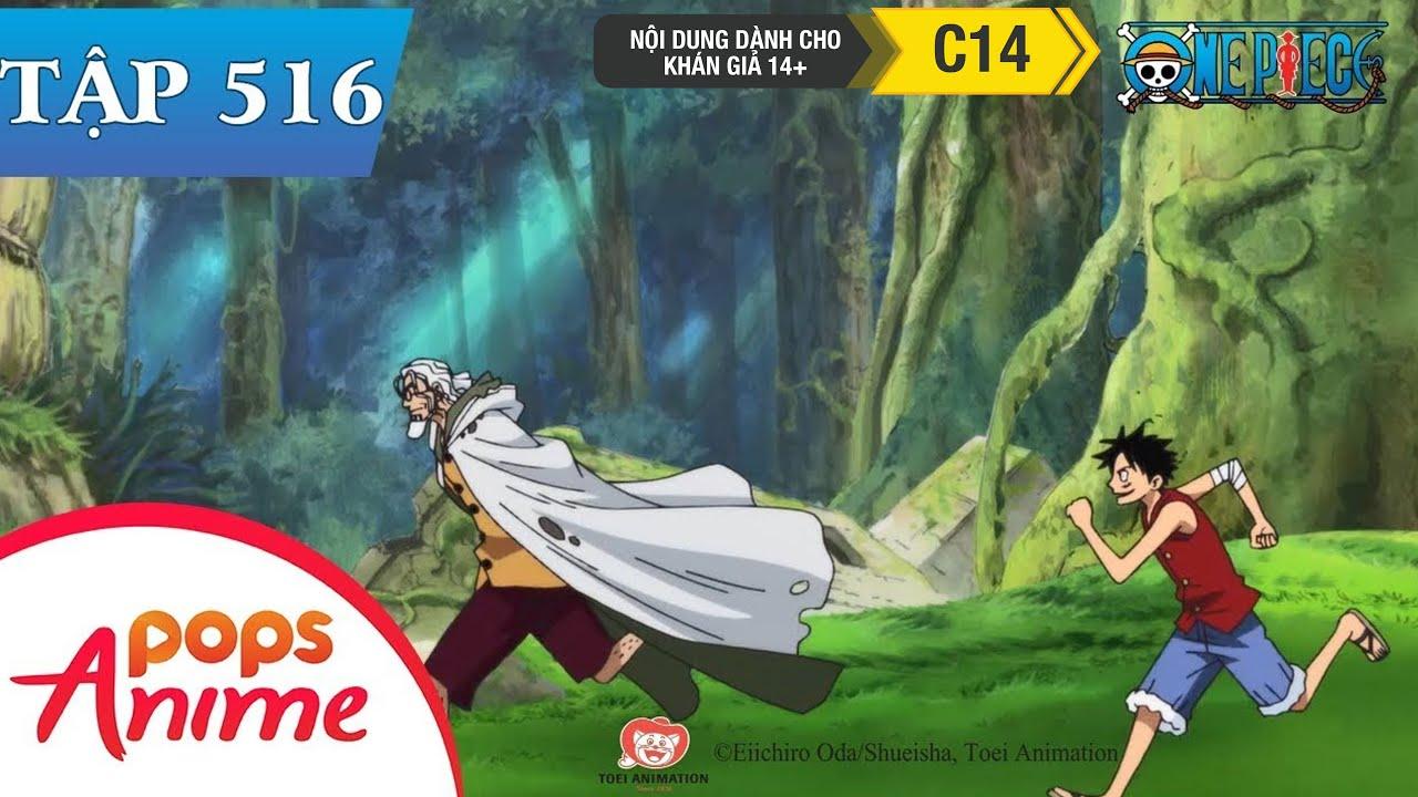 One Piece Tập 516 – Luffy Bắt Đầu Khổ Luyện. 2 Năm Sau Ở Nơi Hẹn Ước – Đảo Hải Tặc