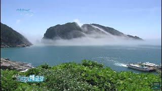 거제도 해금강, 섬 전체가 식물원인 외도(2013년제작)  [와보랑께, 섬으로]