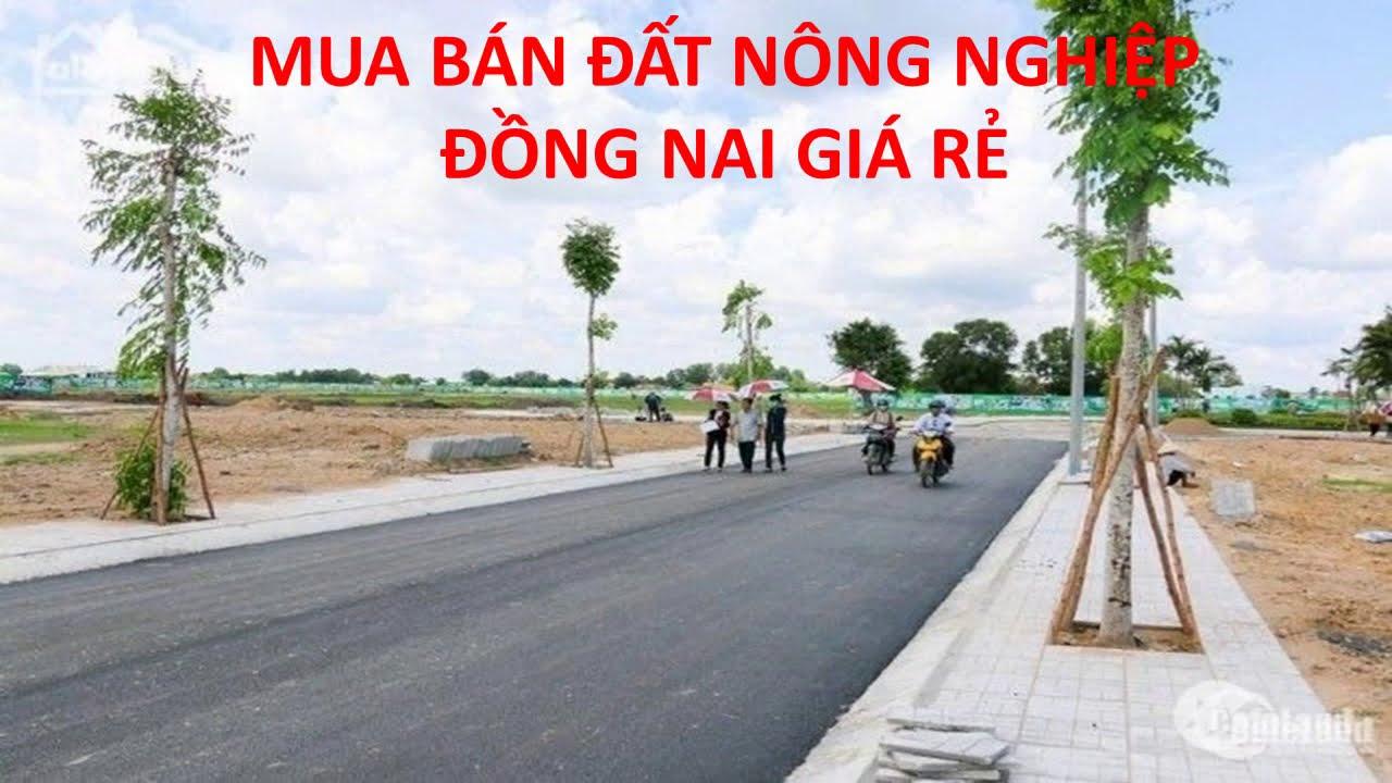 Mua bán đất nông nghiệp Đồng Nai giá rẻ