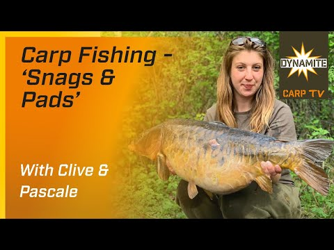 VIDEO* Snags & Pads Carp Fishing with Clive and Pascale - Dynamite ...
