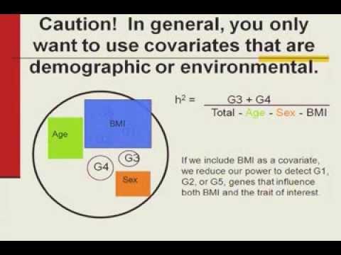 UC Irvine International Imaging Genetics Conference - SOLAR Workshop 2013 part 1
