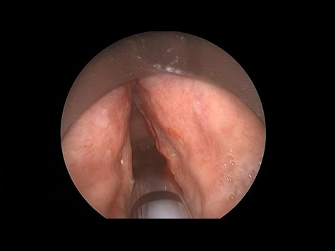 у фото гинеколога смотреть