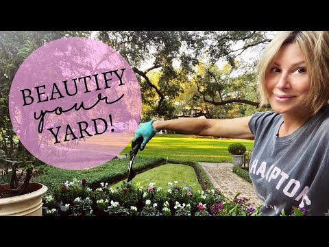 Beautify Your Yard!  Fall Flower Gardening Tips   Dominique Sachse