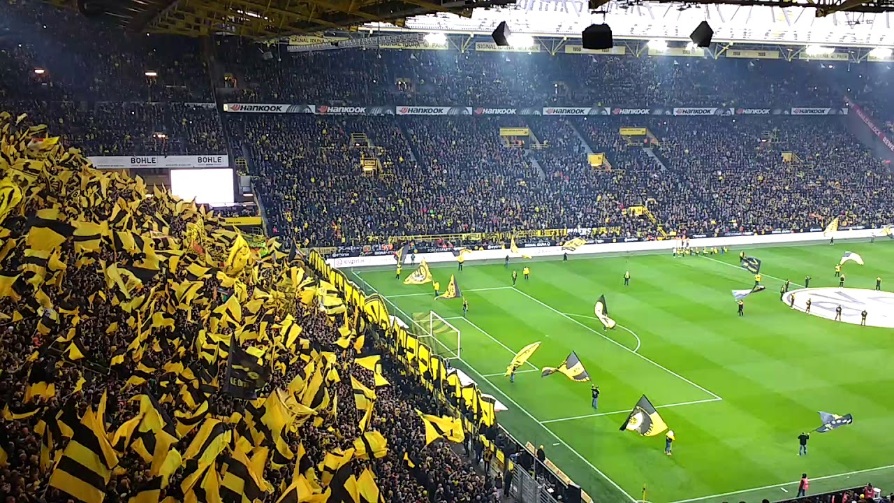Schalke 2017