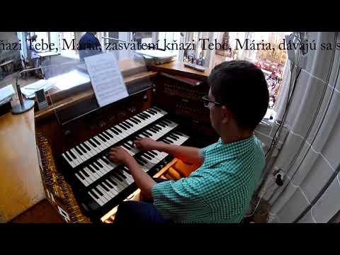 Hymna MKH - Nepoškvrnené srdce Márie (Dóm sv. Alžbety)