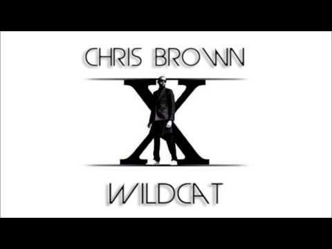 Chris Brown - Wildcat (New Song 2014)