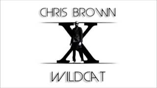 Chris Brown - Wildcat (New Song 2014)