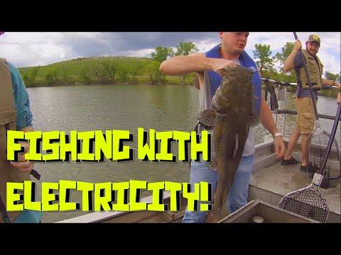 Fishing With Electricity!   Warning! Big Flathead!