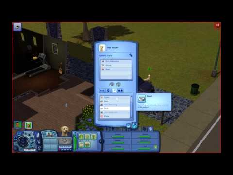 The Sims 3: Testingcheatsenabled True Cheat.