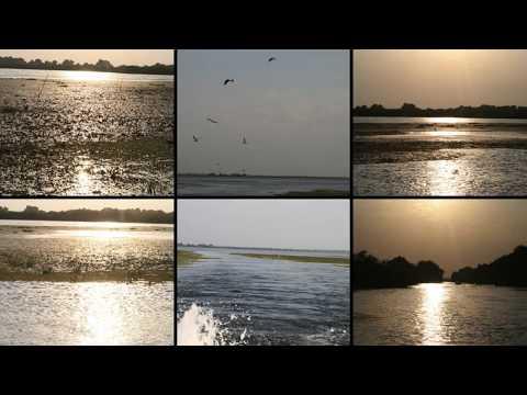 Traveller's Guide:  Autumn in the Danube Delta