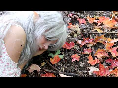 Woodland Fairytale: Elf Cosplay in the Woods | Elves and Fairies | The Magic Crafter
