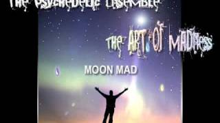 Watch Psychedelic Ensemble Moon Mad video