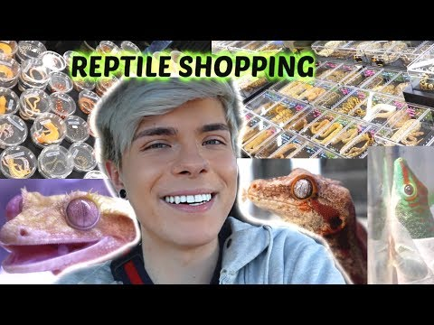 Come Reptile Shopping with Me!!!   Expo Vlog