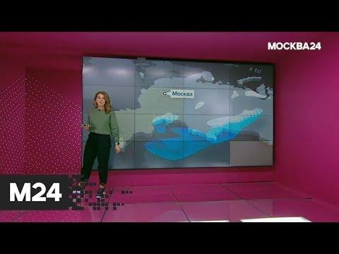 """""""Погода"""": теплая погода придет в столицу - Москва 24"""