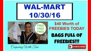 Walmart 10/30/16 Instant OVERAGE | Money Makers For My Cat Food