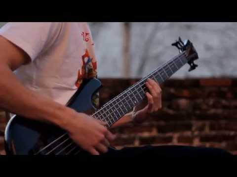 Robert Trujillo - Infectious Grooves - Punk It Up (Bass cover)
