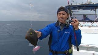 #322 気軽に楽しむ沖縄ボートフィッシング~多様性溢れる美ら海に遊ぶ~