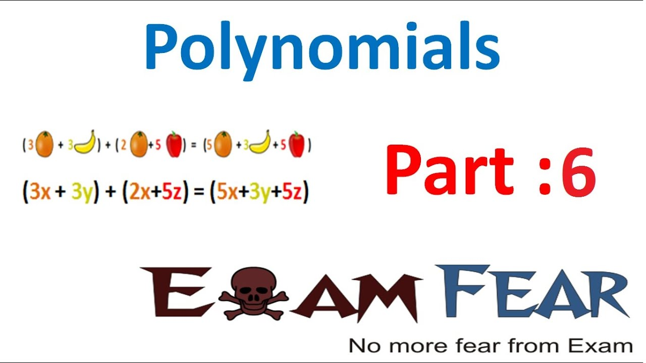 Maths Polynomials part 6 (Degree of Zero polynomial) CBSE class 9 Mathematics IX