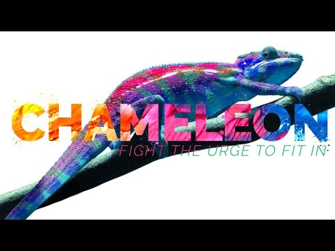 Chameleon | Do Not Conform