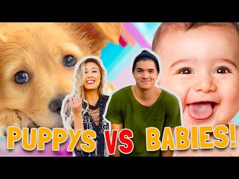 Thumbnail: PUPPIES vs BABIES! (CUTE CONTEST)
