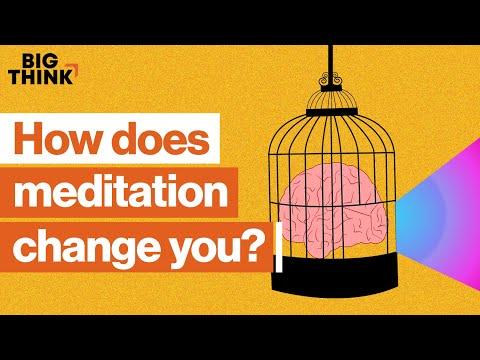 How meditation can change your life and mind | Sam Harris, Jon Kabat-Zinn & more | Big Think
