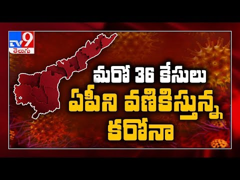 36 new corona cases reported in Andhra Pradesh, state tally at 2100 - TV9