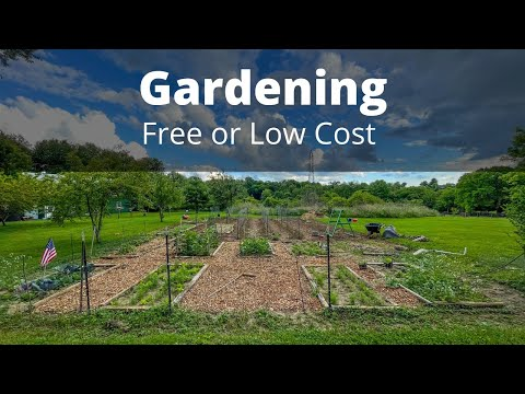 Best FREE garden hacks, tips, and tricks for gardening on a budget.