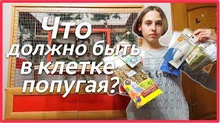 Что должно быть в клетке попугая? Покупки из зоомагазина. | Рокки Life