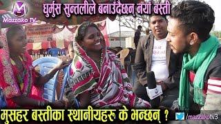 मुसहर बस्तीका स्थानियहरु के भन्छन् ?    Mushar Basti    Dhurmus Suntali Namuna Basti    Mazzako TV