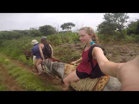 Tonga Travel Vlog