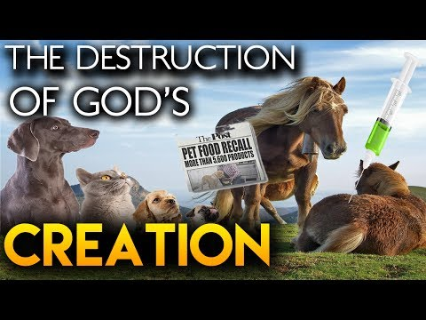 DESTRUCTION Of God's CREATION (Documentary) | Pet Industry Exposed